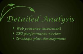Detailed_Analysis_Box