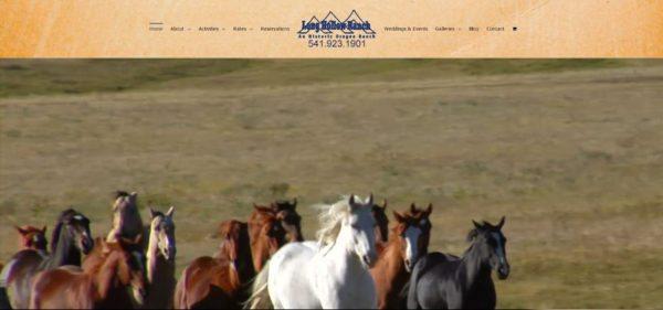 long-hollow-ranch-web-site