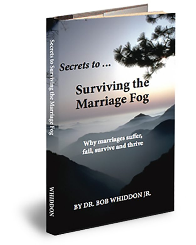 Survive The Fog Book Cover